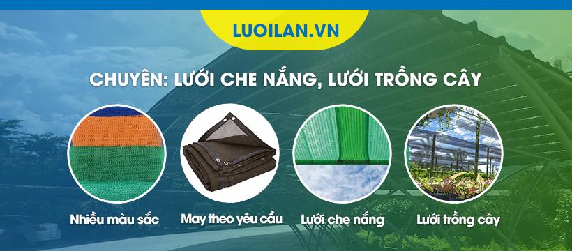 Luoi Lan Che Nang